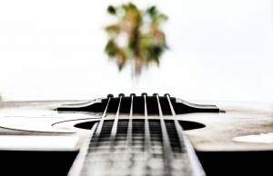 Guitar and Palm Tree
